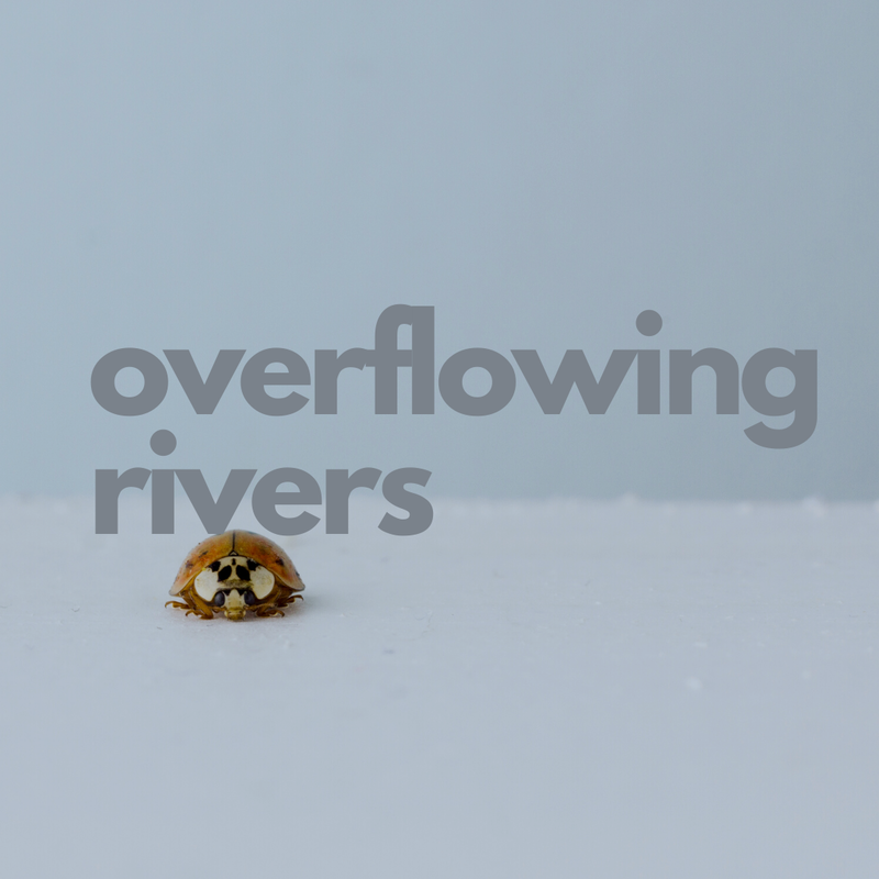 Overflowing Rivers