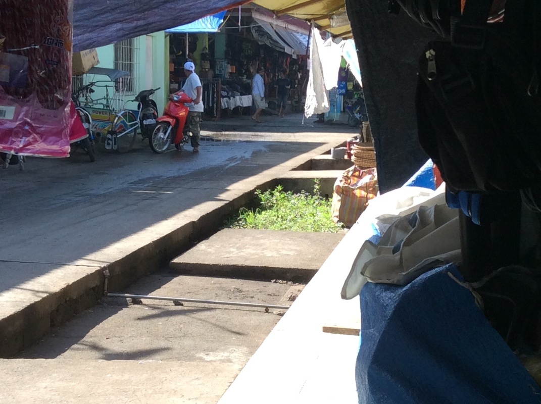 Doing Business In Public Markets, Molave Public Market