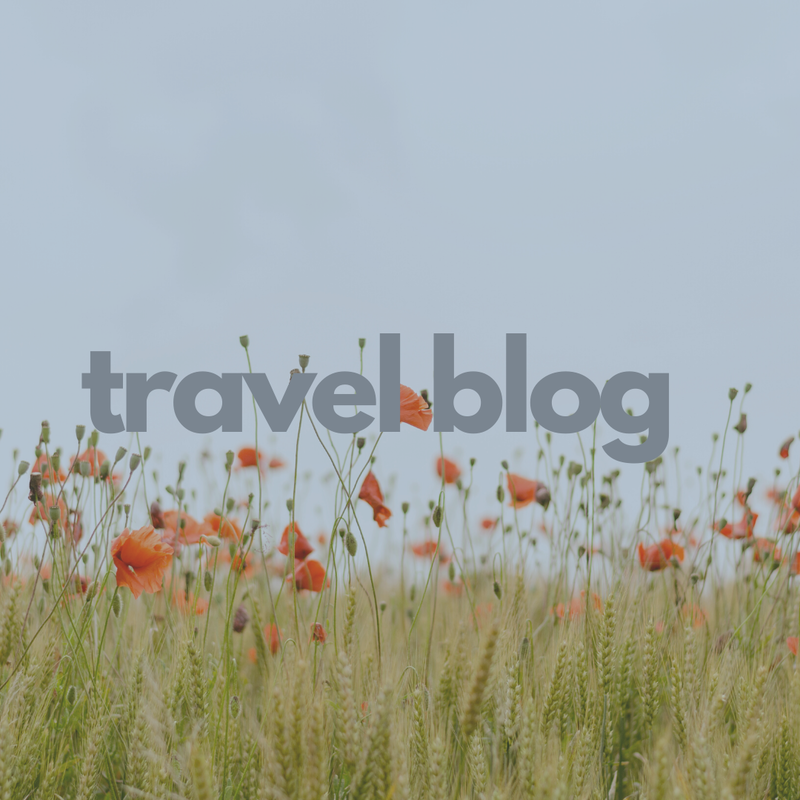Travel Blog